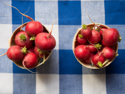 radishes, rosa veloso
