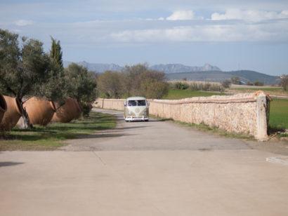 country wedding, portrait, Segovia, rosa veloso.